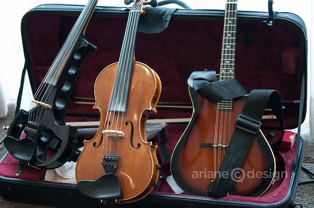 Ruckus Deluxe: instruments