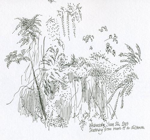 Weeds (6-26-13)