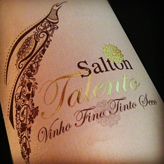 Salton-Talento-Papa-Francisco[1]