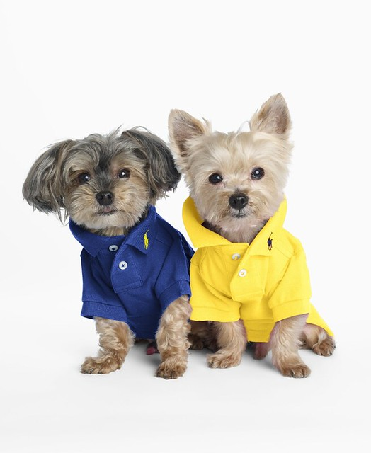 Ralph Lauren Classic Dog Polo x 2