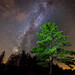 Light Up Your Life by Mike Ver Sprill - Milky Way Mike