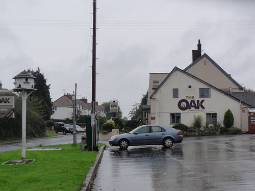 The Oak - Refuge