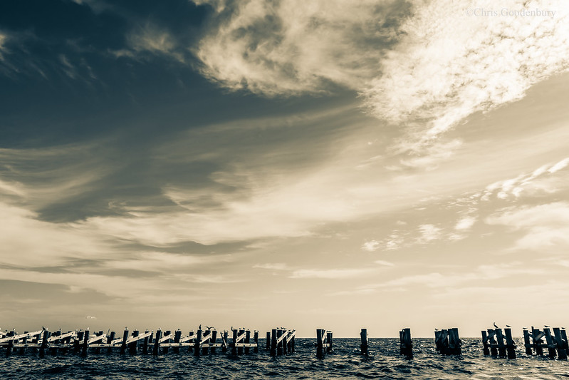 A Palisade Against the Waves | Boca Grande