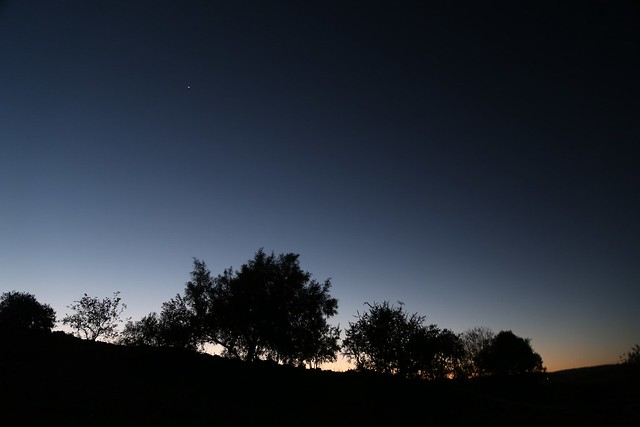 Venus over Rising Star