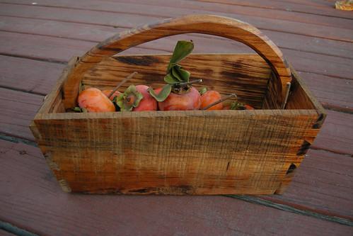 Garden Basket DSCN0334