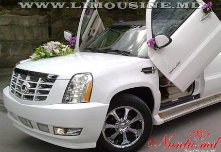 Большой выбор лимузинов от Limousine.md