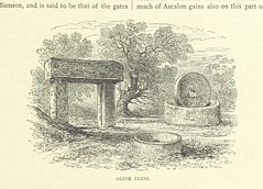 """British Library digitised image from page 89 of """"Palestine Past and Present. Pictorial and descriptive ... Illustrated, etc"""""""