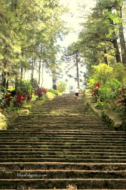 Wright Park Baguio City