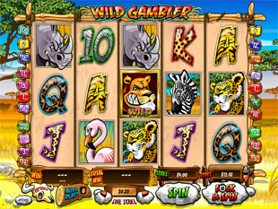 Wild Gambler slot game online review