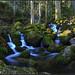 Cascade de Chanony ©Sylvain ABDOUL