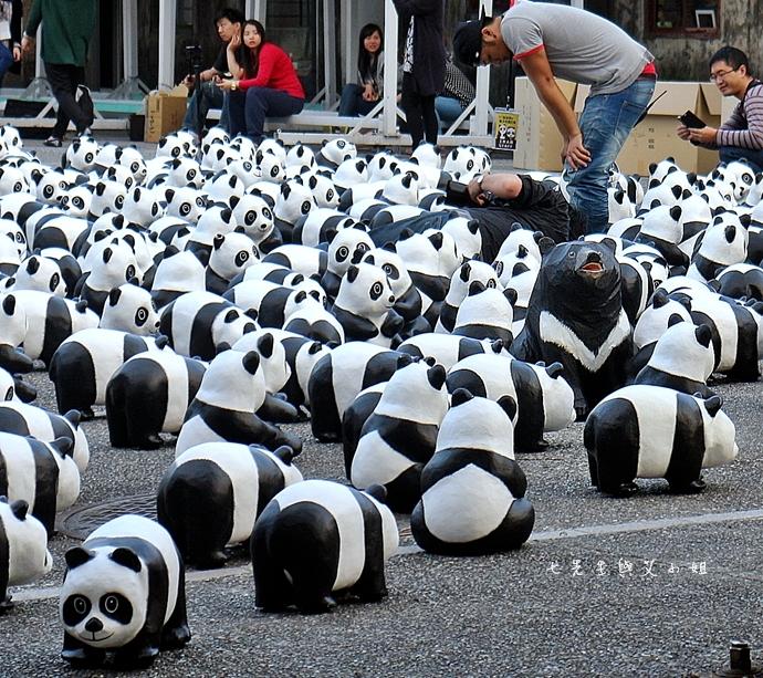 12 紙貓熊 1600貓熊之旅