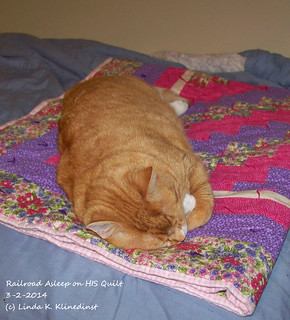 100_9088 - Railroad Asleep on HIS Quilt - 3-2-2014