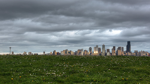 seattle cityscape westseattle pacificnorthwest canon grass cloudy overcast spaceneedle canoneos5dmarkiii canonef2470mmf28lusm johnwestrock