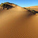 Namib sand by chris.merwe