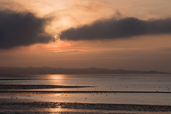 Sunset, Udale Bay, Black Isle
