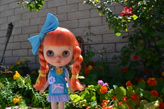 April Apricot - Pipa Power Custom
