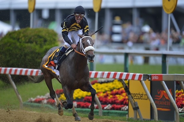 Oxbow winning the 2013 Preakness