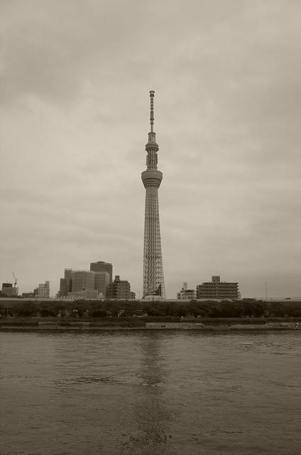 Tokyo Hotaru Light Symphony 2013-03 sepia