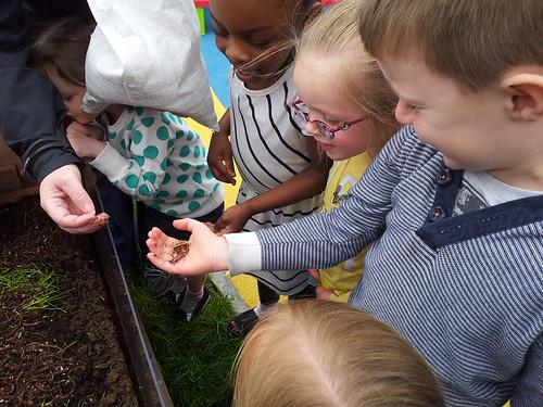 Springhall Worm Farm 5