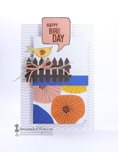 Happy Bird Day (FSS birthday post)