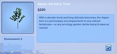 Aspen Ad Astra Tree