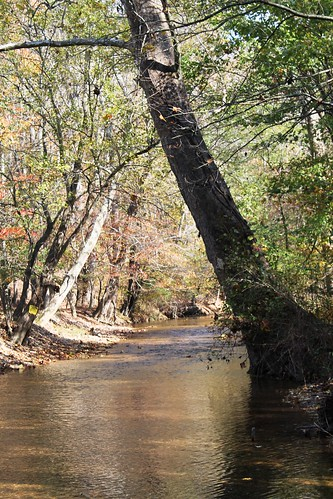 Image of the Bennett Creek