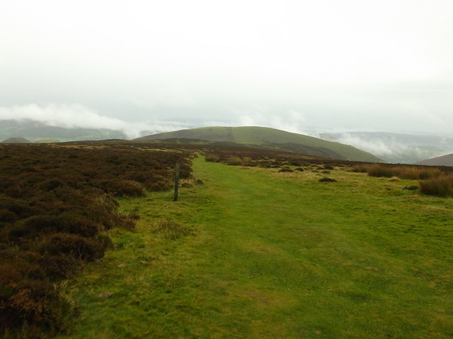 Pen y Fan and Pole Bank walk 251