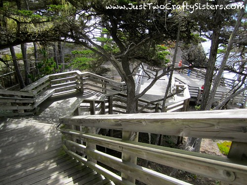 Stairs in Monterey