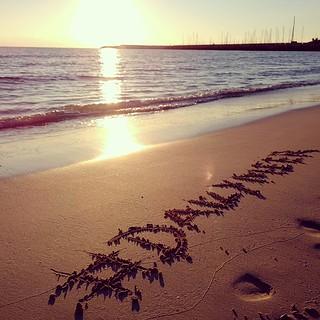 Image of Platja de Es Trenc Es Trenc Beach near Ses Salines. valencia square squareformat iphoneography instagramapp uploaded:by=instagram foursquare:venue=4bb5e49aef159c74842275f7