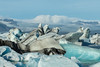 Jokulsarlon Icebergs by Mark Heeney UK