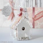 Gingerbread bird house packaged up