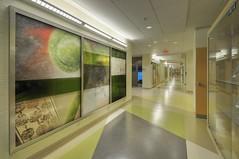 Oelman Hall Corridor