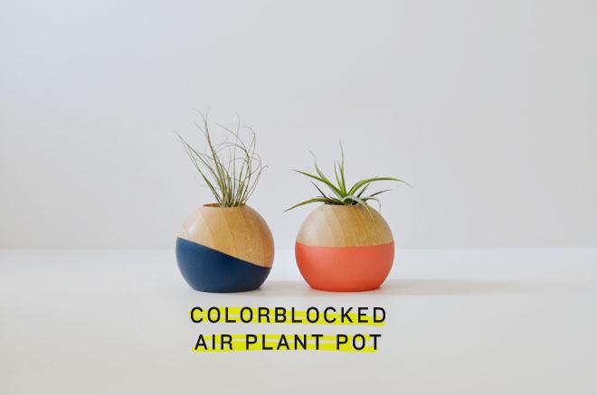 colorblockpot