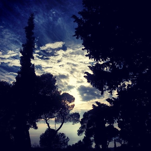 city trees sky nature clouds forest square view hellas greece squareformat thessaloniki cloudscape iphoneography instagramapp xproii uploaded:by=instagram sheikhsou foursquare:venue=4fcf4936e4b0f6d527f5d3e2