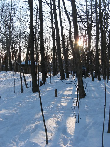 Out Snowshoeing