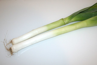 01 - Zutat Lauch / Ingredient leek
