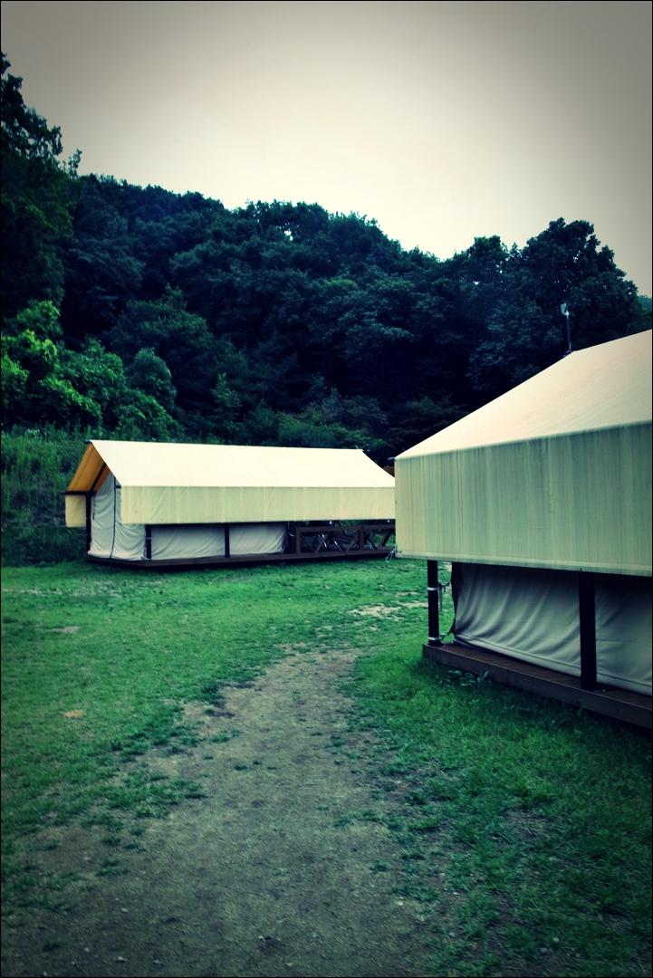 텐트-'용인 킹 글램핑'