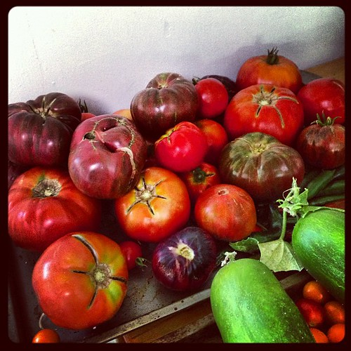 Just a few tomatoes from my parents garden. #extralarge #summerlove