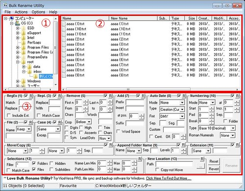 Bulk Rename Utility(x64)_130811+