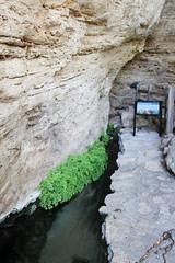 Montezuma Well-2012-10-13-031