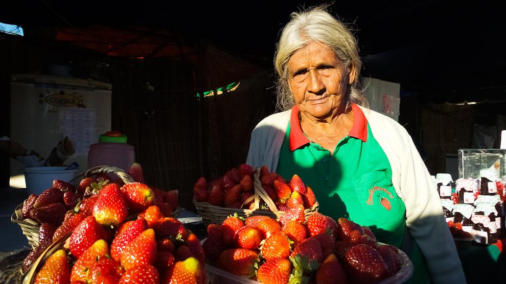 Una anciana se ubica entre los cientos de puestos de venta de frutillas y productos realizados con esta fruta, en la tarde de inauguración del festival de la frutilla en Estanzuela (Elton Núñez).