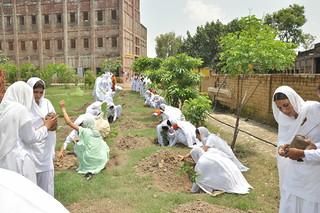 Girls plant saplings around campus. Source: Surendra Bansal