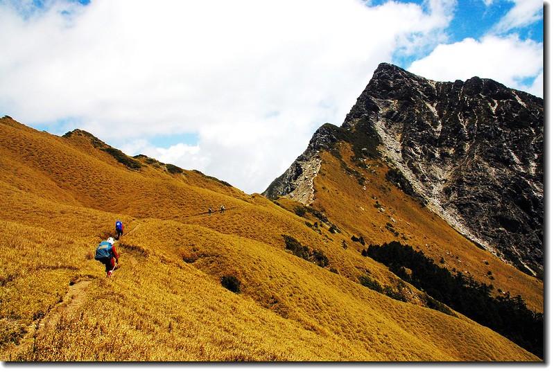 奇萊主山北峰 2