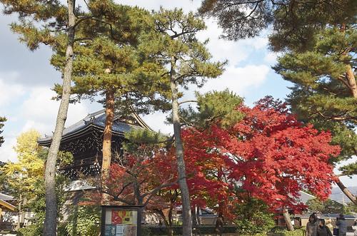 【写真】紅葉 : 相国寺