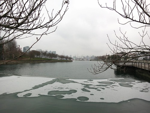 Sea ice in Vancouver