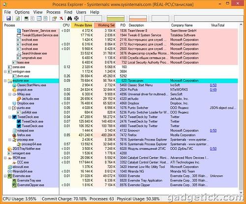 Вирусы в Process Explorer 16
