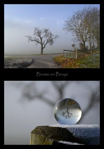 Le brouillard quitte peu à peu la Broye
