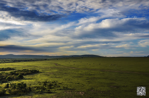 africa morning sky green sunrise landscape kenya wildlife aerial safari hotairballoon masaimara