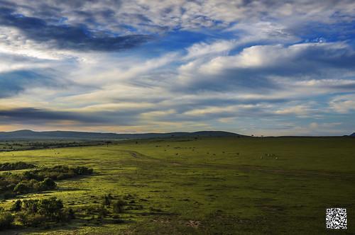 africa morning sky green sunrise landscape kenya wildlife aerial safari hotairballoon masaimara