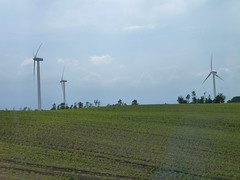 agriculture, machine, windmill, field, plain, wind, wind farm, electricity, wind turbine, grassland,